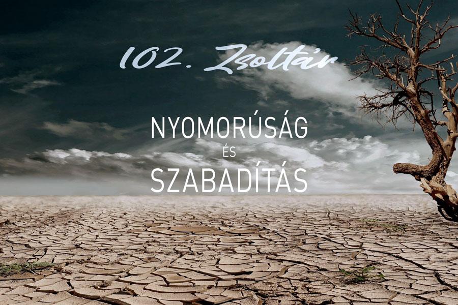 Zsoltárok 102. – Kübler János
