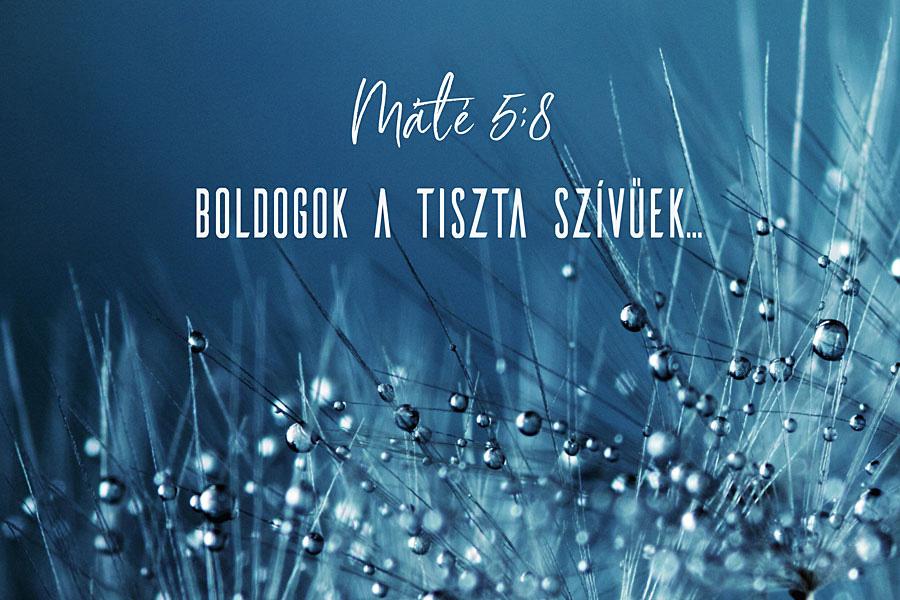 Heizer Tamás – Máté 5:8