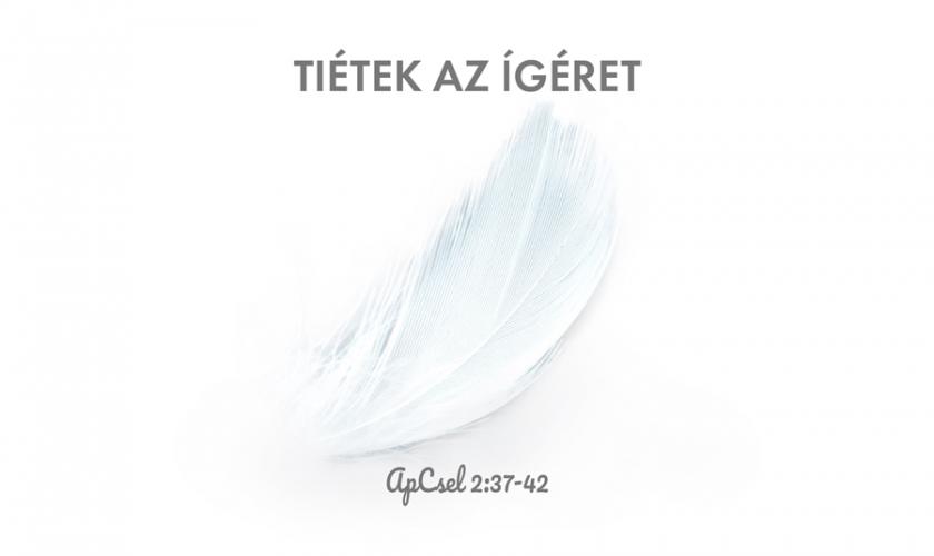 Kübler János – Apcsel. 2:37-42