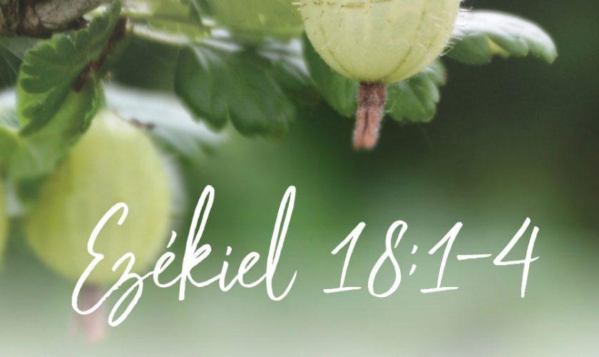 Ezékiel 18:1-4. – Herjeczky Géza