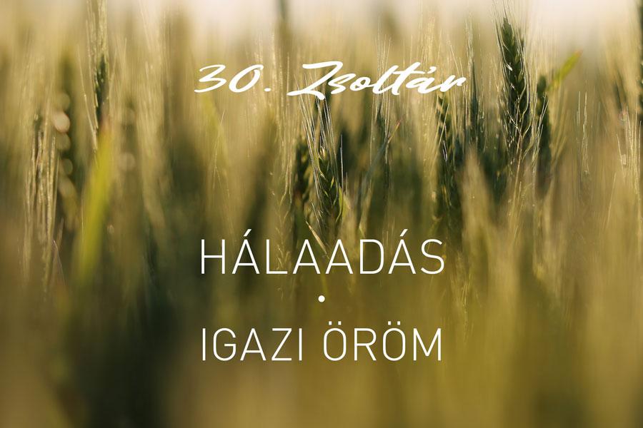 Zsoltárok 30. – Kübler János