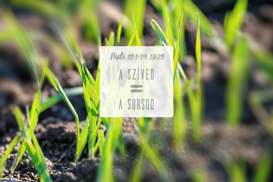 Heizer Tamás – Máté 13:1-9, 18-23