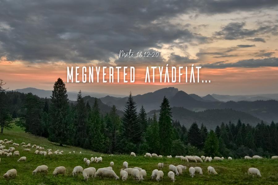 Heizer Tamás – Máté 18:15-17